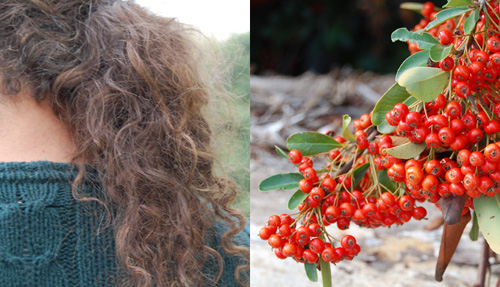 Hair-Berries