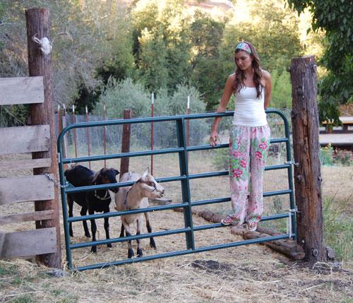 Goat-Girl