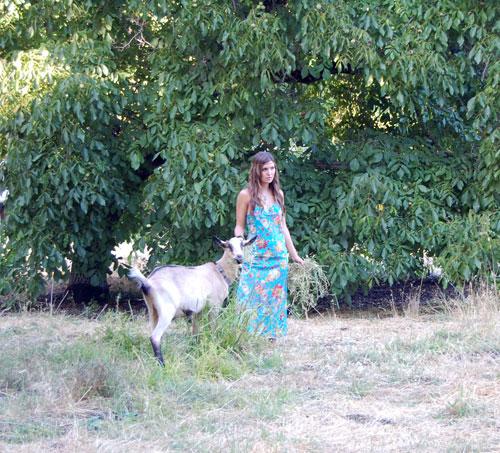 Goat-Girl-2