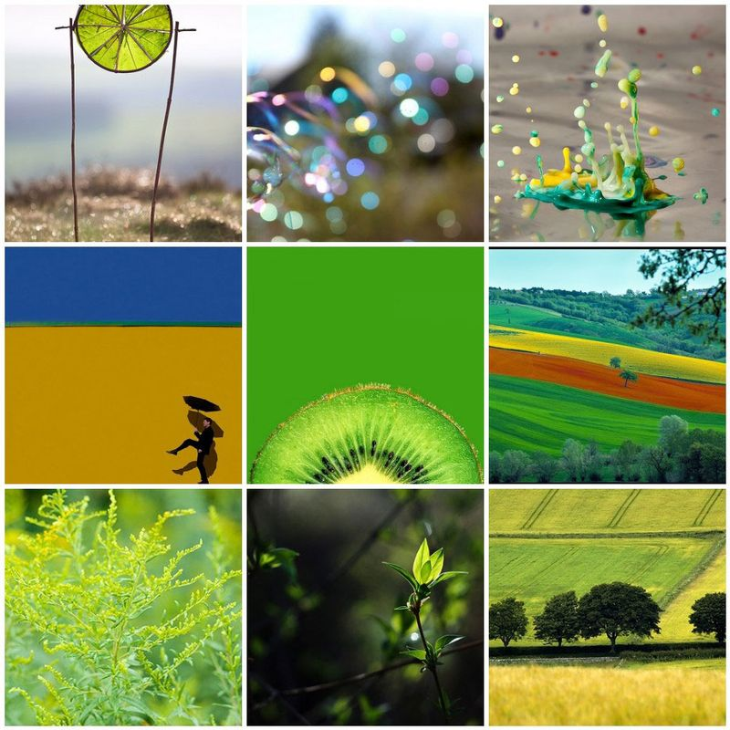 Green-&-Yellow