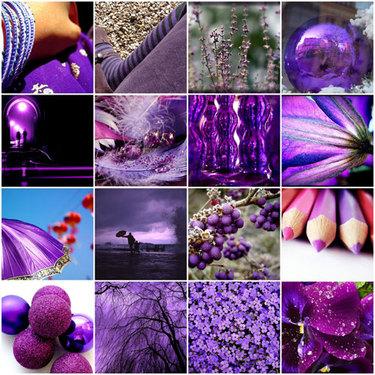Violetmosaic